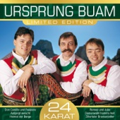 I bin a Volksmusikant vom Zillertal