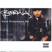 Vich Pardesan de (In the Foreign Land)