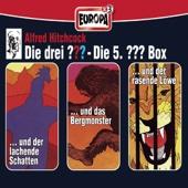 Folge 13-15: 3er Box, Vol.5