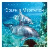 Dolphin Meditation (gemafrei)