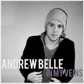 Andrew Belle - In My Veins (feat. Erin McCarley) artwork