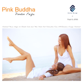 Pink Buddha Voodoo Cafè: Chillout Music Ibiza 2012 Blank Isla del Mar Martini Chill Out Collection