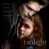 Flightless Bird, American Mouth - Iron & Wine