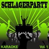 Skandal im Sperrbezirk (Premium Karaoke Version mit Background Gesang) [Originally Performed By Spider Murphy Gang]