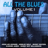 All The Blues For You -volume One - Various Artists