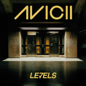 Levels (Radio Edit)
