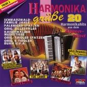 Harmonikagrüße, Folge 3: Instrumental