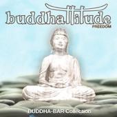 Buddhattitude Freedom