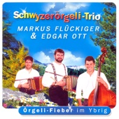 Schwyzerörgeli - Trio