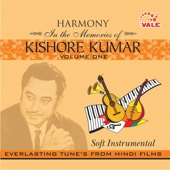 Hume tumse pyar kitna-kudrat - Hindi Instrumental Group