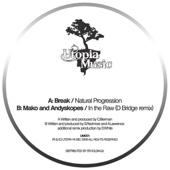 Natural Progression / In The Raw (dBridge Remix) cover art