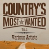 Grand Ole Country Live Vol. 1