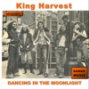 Dancing In the Moonlight - Single