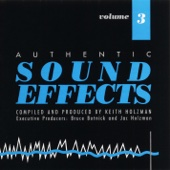 Authentic Sound Effects, Vol. 3