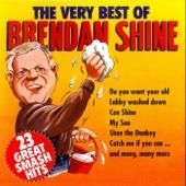 The Very Best of Brendan Shine