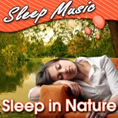 Sleep In Nature (Nature Sounds)
