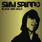 Sam Sparro - Black & Gold artwork