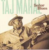 Download Taj Mahal - Queen Bee