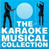 The Karaoke Musical Collection, Vol. 1