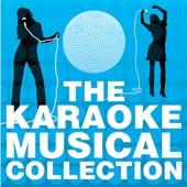 Carousel - If I Loved You - Karaoke Version
