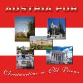 Christmastime In Old Vienna (Radio Version)