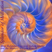 Kamavardhini (The Lover and the Beloved) [feat. V.K. Raman] - Splendor of Meditation