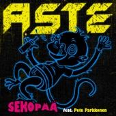 Sekopää (feat. Pete Parkkonen)