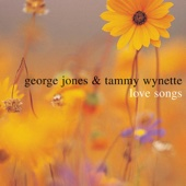 Tammy Wynette & George Jones - If Loving You Starts Hurting Me artwork