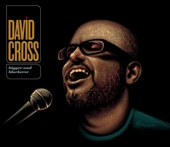 Cover to David Cross's Bigger and Blackerer (Live)