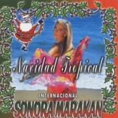 Llego Navidad / Jingle Bells / Burrito Sabanero (Instrumentales)