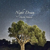 Night Dream - EP