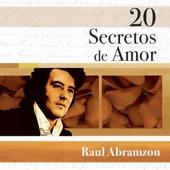 20 Secretos de Amor: Raul Abramzon