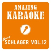 Amazing Karaoke - Best of Schlager, Vol. 12