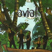 Anandraj Benjamin Paul - Avial artwork