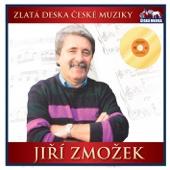 Už Mi, Lásko, Není Dvacet Let - Jiří Zmožek