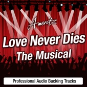 Love Never Dies (In The Style Of Love Never Dies – The Musical)