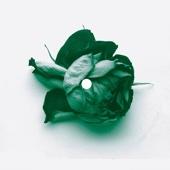 Love Can Damage Your Health (Abicah Soul/Dennis Ferrer Remix)