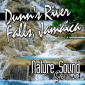 Dunn's River Falls, Jamaica - Single