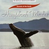 The David Sun Natural Sound Collection: Sounds of the Earth - Humpback Whales, Sounds of the Earth