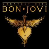 Bon Jovi - It's My Life artwork