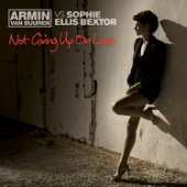 Not Giving Up On Love (Armin Van Buuren Vs. Sophie Ellis Bextor) - EP (Remixes Vol. 2) cover art