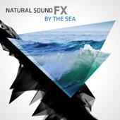 Natural Sound FX: By the Sea