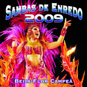 Sambas de Enredo das Escolas de Samba: Carnaval 2009