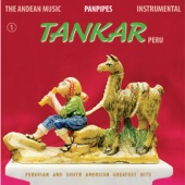 The Andean Music: Panpipes - Instrumental Vol. 1