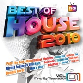 Best of House 2010, Vol. 1