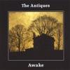Awake, The Antiques