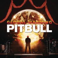 descargar bajar mp3 Pitbull Feel This Moment (feat. Christina Aguilera)
