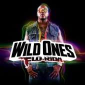 Wild Ones cover art