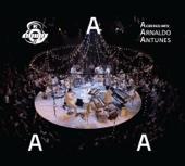 Arnaldo Antunes - Acústico MTV (Ao Vivo)