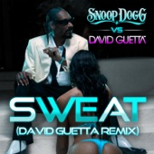 Sweat / Wet (Snoop Dogg vs. David Guetta) - Single